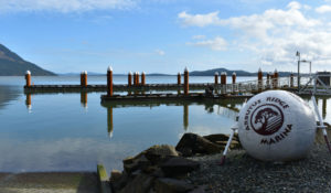 Arbutus Ridge Marina