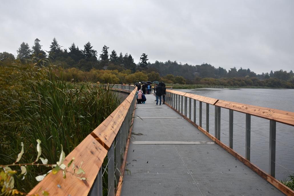 Swan Lake floating boardwalk